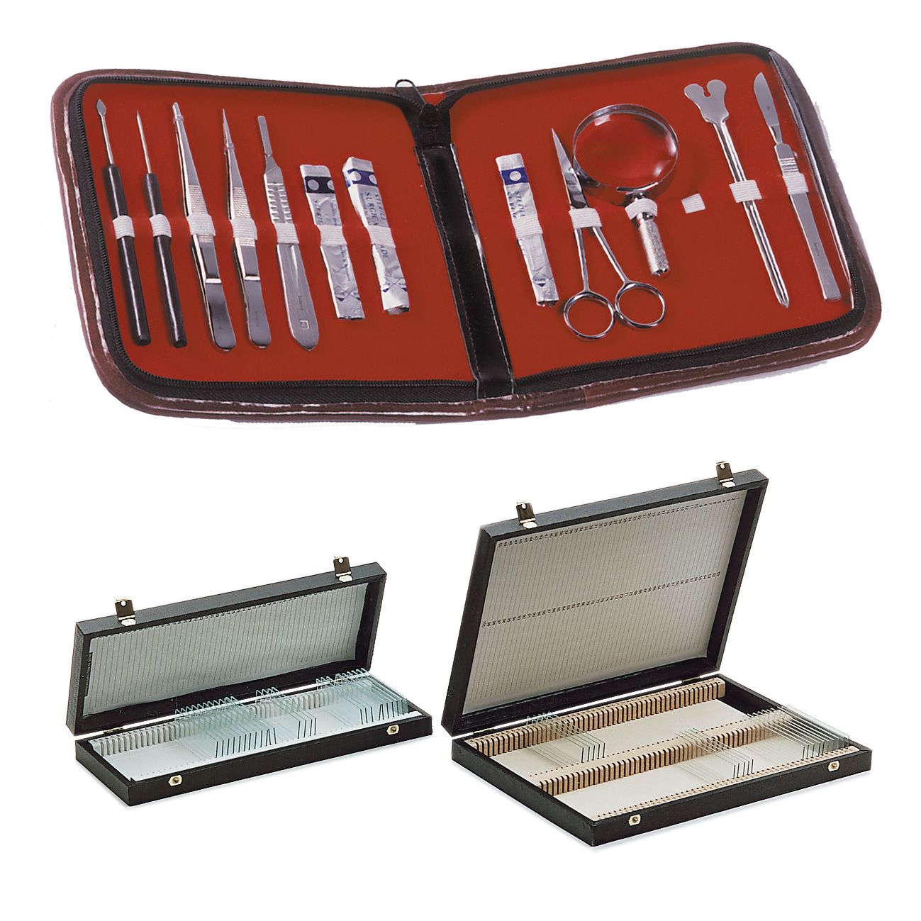 Instruments for dissection and slide boxes